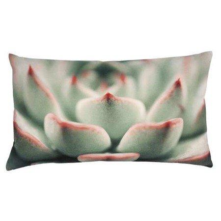 PAD Kissen Kissenhuelle Succulent pink R10